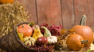 Acción de Gracias es una festividad ideal para meterse entre fogones y p...