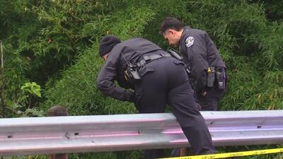 Autoridades investigan el hallazgo de un cadáver en el Arroyo Shoal