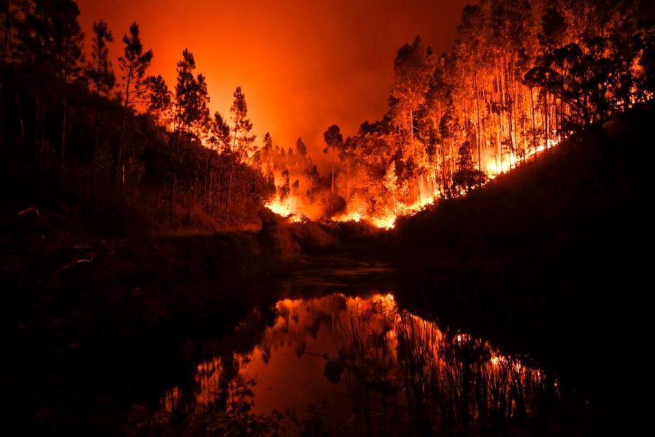 MUNDO | Suben a 64 los muertos por el incendio que sigue activo en Portugal