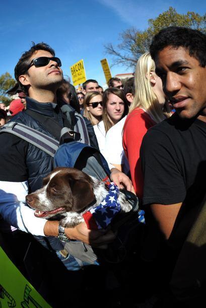 Los animales, como este simpático perro, mostraban su identidad nacional...