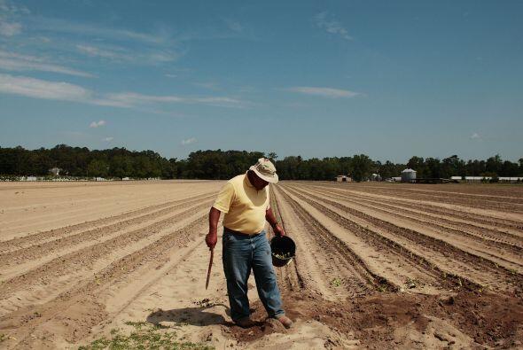 Su papel en la cinta 'Better Life' cuenta la historia de Carlos Galindo,...