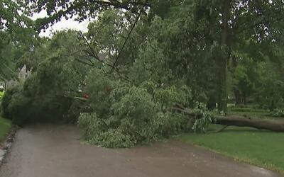 Fuertes tormentas causaron estragos en Lake Bluff
