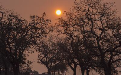El cielo rojo en Napa, en medio de los incendios que han afectado la zon...