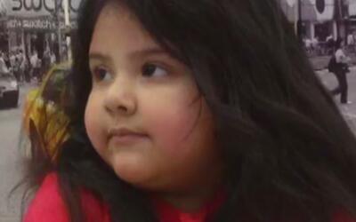 Se dieron a conocer las causas de la muerte de una niña de cinco años qu...