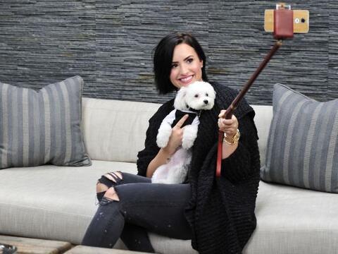 Demi Lovato posó con su perrito, Buddy, en una selfie que tom&oac...