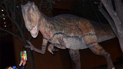 El carnívoro más grande que ha existido en el planeta