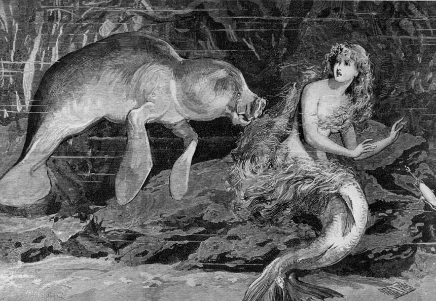criaturas mitologicas