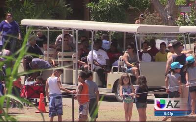 Comunidad hispana celebró el día del niño en el zoológico de Phoenix
