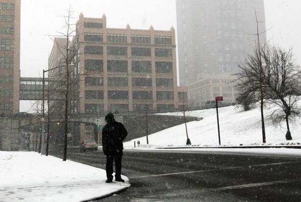 Central Park registró 23 centímetros de nieve,  tan s&oacu...