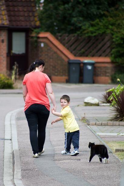 El adorable gato ayuda a aliviar la ansiedad de William, así que...