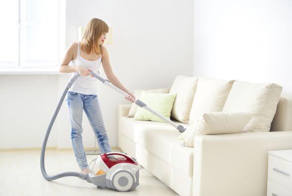 Limpia los tapizados. Las bacterias pueden provocar olores desagradables...