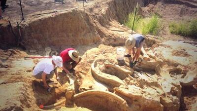 Una familia estaba cavando un pozo cuando de repente encontraron los hue...