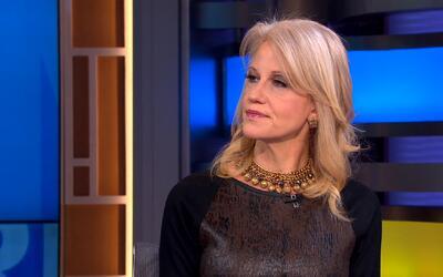 """Conway sobre las acusaciones de espionaje a Trump: """"Mi trabajo no es ten..."""