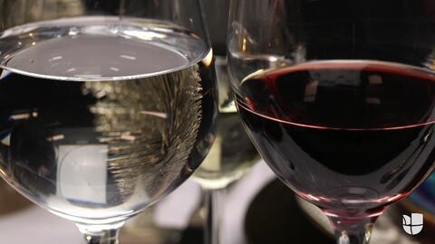 Qué copa se utiliza para cada tipo de vino