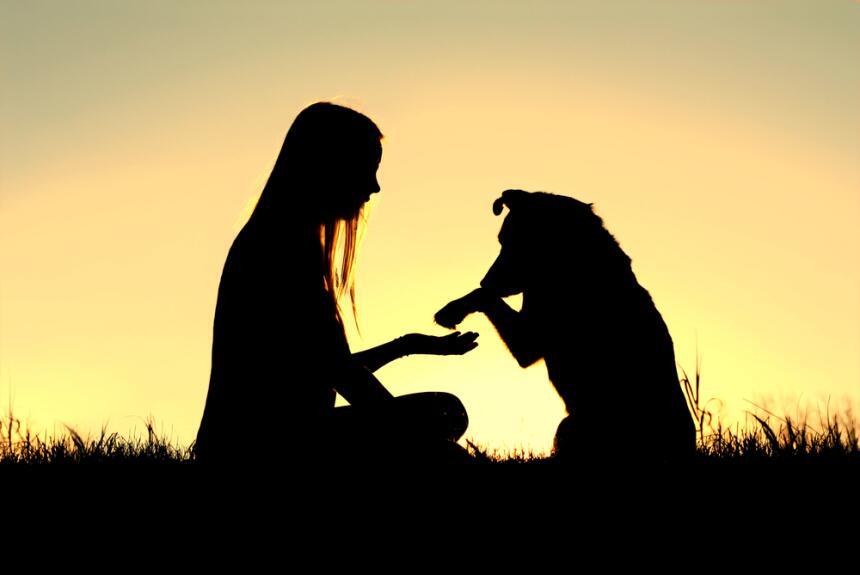 Inicia el mes del perro, la lealtad se impone y las personas son más sin...