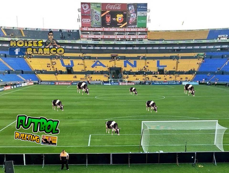 La Liga de Campeones y la Copa MX desde los memes más divertidos 2827956...