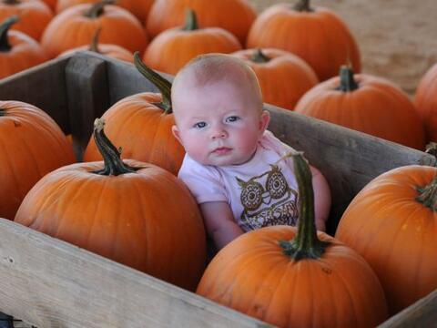 Para aquellos que creen que Halloween personifíca sólo lo...