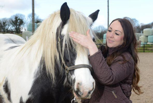 Con su mente puede llegar a curar traumas de los caballos.