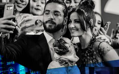 Selfies, reencuentros y hasta perros: las fotos exclusivas de Premio Lo...