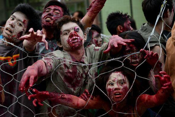 El horror invade los corazones de cualquiera al ver esto, y eso que no e...
