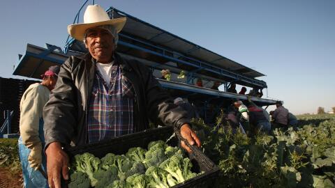 Hispanos trabajando en EEUU