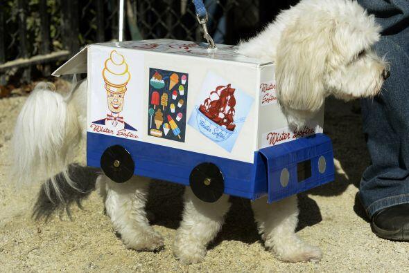 Si a tu mascota le encanta el helado, también puede ser un carrito de lo...