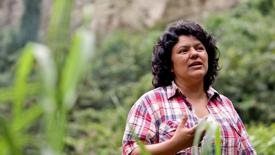 Ambientalistas denuncian 29 homicidios de activistas en México de 2016 a...