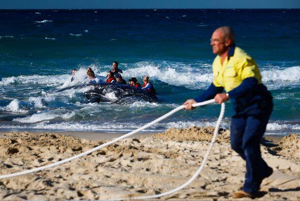 Un gran equipo de autoridades australianas luchó por rescatar a un bebé...