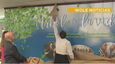 Develan mural en Cesco de Mayagüez para concientizar sobre la donación de órganos