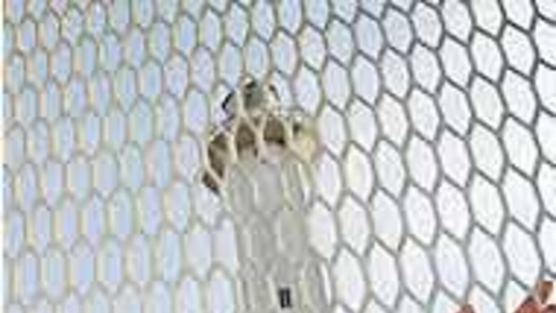 Senadores piden revisar proyecto de construcción del muro virtual en la...