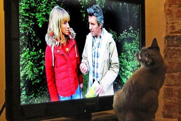 Ahora, cada tarde se sienta a mirar el televisor, y se avienta al televi...
