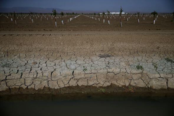 Tierra cuarteada en las proximidades de un canal de agua a finales de ab...