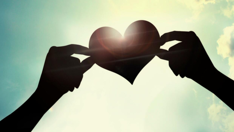 Educando contra la homofobia: el amor nunca es un error a62ea0689b844559...