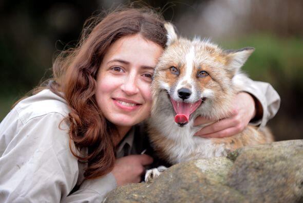 ¡Este animal vaya que es especial, pues cree que es un perro!