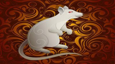 Tauro - Zodiacal Horóscopos, Números Especiales rata-ok.jpg