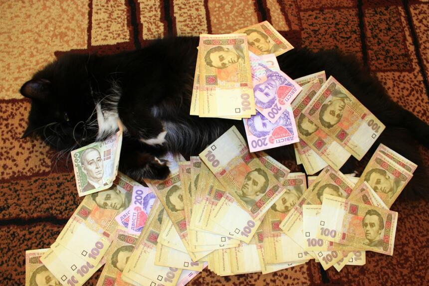 Conoce el misticismo del gato negro  11.jpg