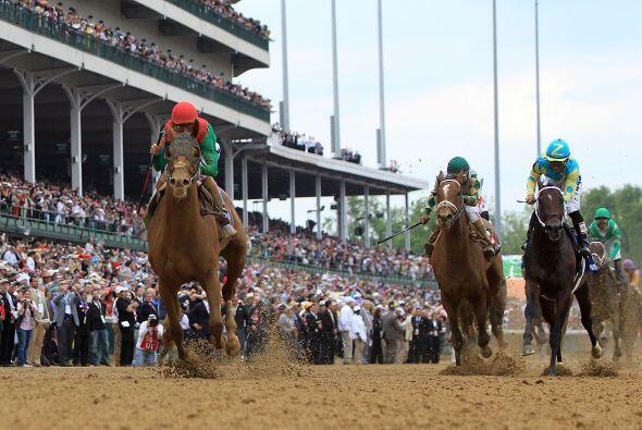 El caballo Nehro se ubicó en segundo lugar y quien podía dar la sorpresa...