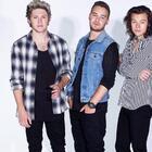 Esta fan gritó tanto en un concierto de One Direction que se le desgarró un pulmón