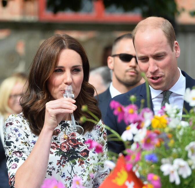 Poco tiempo tuvo el príncipe William para advertirle sobre el potente sa...