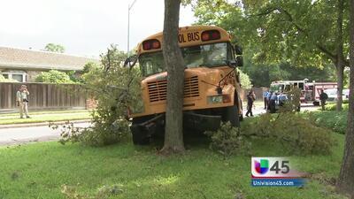 Bus escolar se estrelló contra un árbol