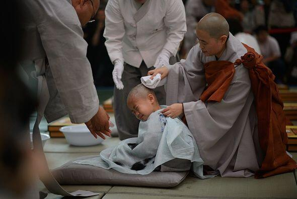 """Los monjes le afeitan la cabeza a un niño en un acto llamado """"Los niños..."""