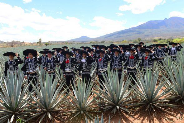 Las Chivas del Guadalajara listos para su foto oficial con aroma a agave...
