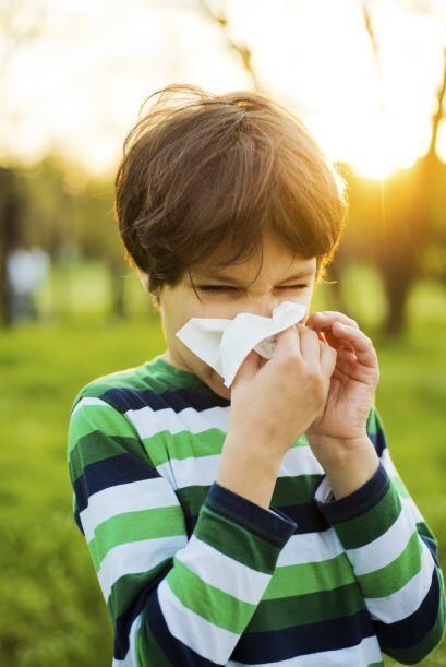 Alergias.Vigila la reacción de tus niños frente a estos alimentos para v...