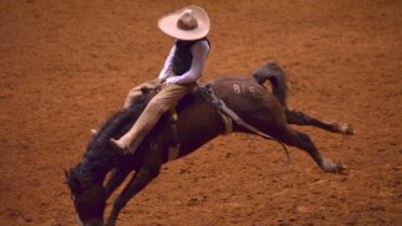 Los mejores vaqueros montarán potros salvajes y toros enfurecidos