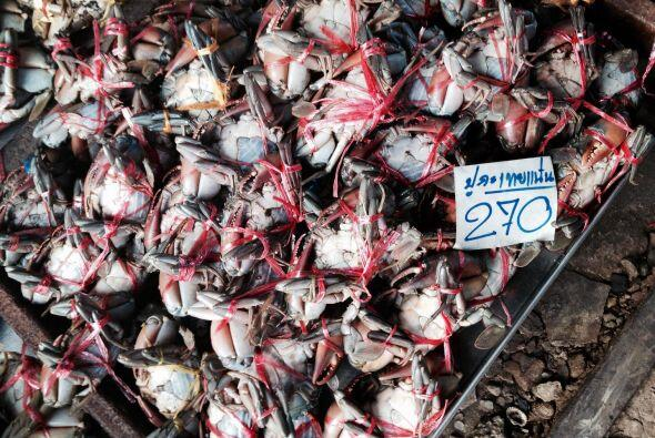 Estos otros, cangrejitos o jaibas, no lo parecen, pero son muy gustosos....
