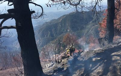 Bomberos combaten un incendio de maleza en Mt. Wilson.