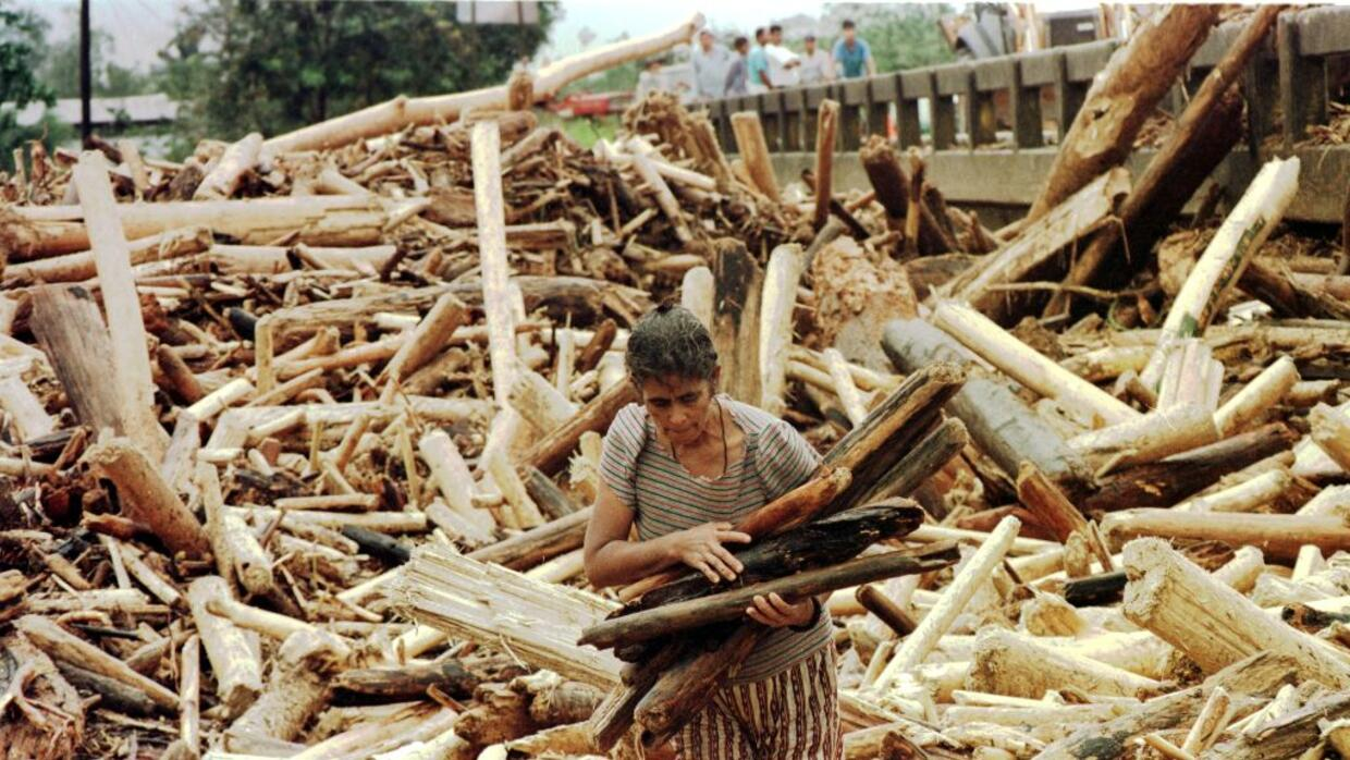 A homeless woman picks up some wood October 31, 1998, from a pile of upr...