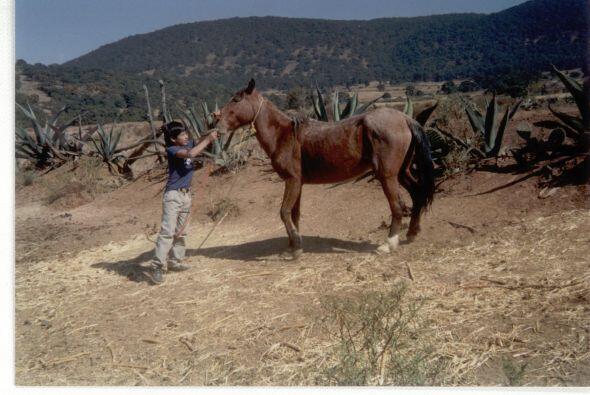 Cada año iba a Michoacán de vacaciones, ahí aprendi...