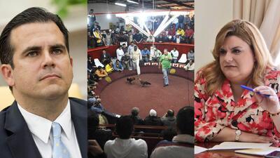 """""""Salieron Manilos"""": Industria gallística se siente defraudada por los políticos de Puerto Rico"""