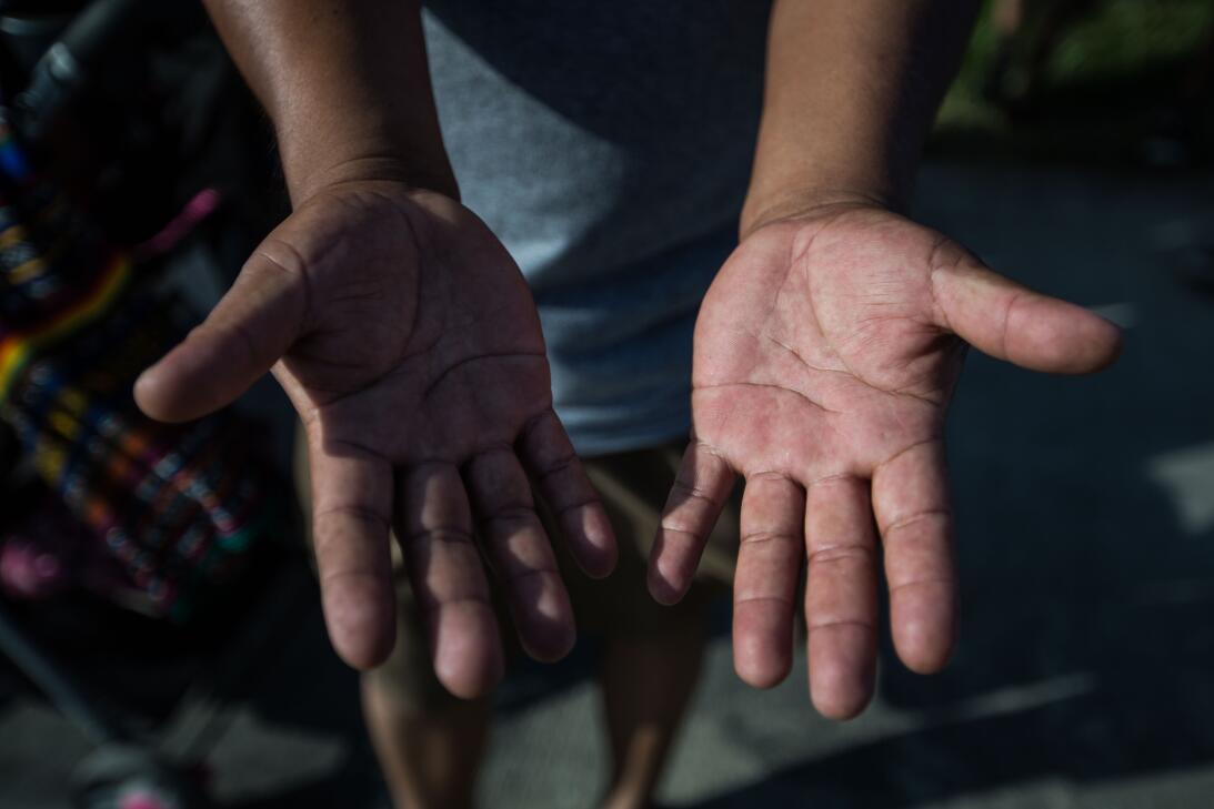 """Edgar, 34, de Guatemala, pisca tomates desde hace 11 años. """"Hoy no he id..."""